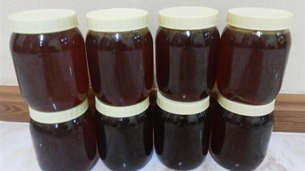 مشروع مصنع العسل الأسود بأقل التكاليف